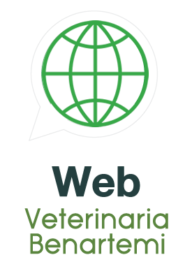 Web Hospital Veterinario Benartemi